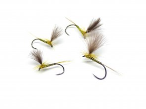 Quill Parachute Golden Olive
