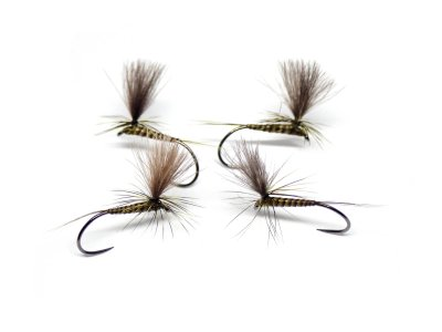 Quill Parachute Olive